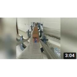 EOL Конвейерная система для коробов на платформе FB-175